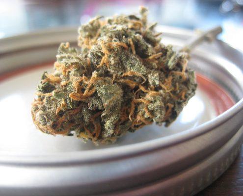 Marijuana Delivery Form